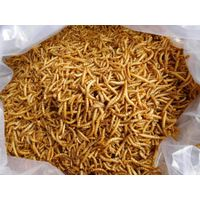 Wholesale dried Meal Worms/Mealworms for Poultry feed animal food