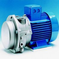 2BV Liquid ring vacuum pump