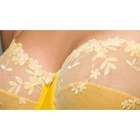 underwear bra