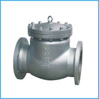 class150 swing check valve stainless steel