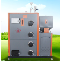 100 kg biomass steam boiler for food industry