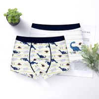 boy underwear animal cartoon design with customize products and logo 100% cotton for boy's