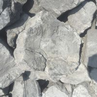 Foundry Coal Coke with Big Size 200-350mm