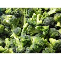 frozen broccoli, IQF broccoli, frozen vegetable, packed broccoli