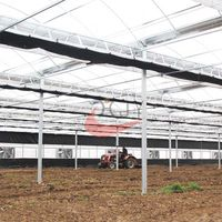 Agriculture Plastic Large Multi Span Greenhousefor Sale
