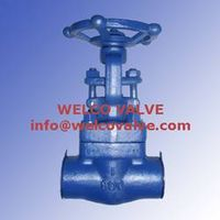 High Temperature Forged Steel Valve