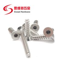 Countersunk head socket screw A2 A4 stainless steel blunt tip tapping screw with competitive price thumbnail image