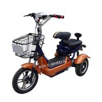500W48V Passager Electric Tricycle with Basket (TC-013) thumbnail image