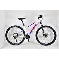 Tourrein 29Inch 30Speed Alloy Mountain Bike