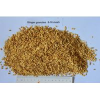 Dried ginger granules/dehydrated ginger granules 8-16mesh thumbnail image