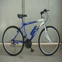 2012 new MTB bicycle