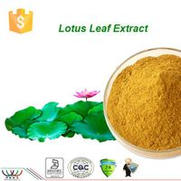 free sample 100% natural HPLC 0.2% 1% 2% lotus leaf extract nuciferine
