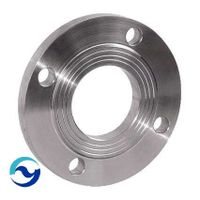 Pl Stainless Steel Flange, RF/FF Class 150/300/600 thumbnail image
