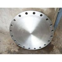 Offer Titanium flange
