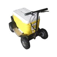 car cooler and warmer box scooter(SX-G110-E)