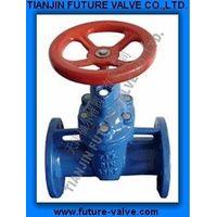 Soft Sealing Gate Valves to DIN3352-F5 (Z45X-16) thumbnail image