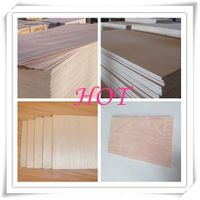 Factory-directly Sales Commercial Plywood/Bintangor /Okoume/Pine/Birch Plywood