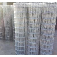 High Quality Factory Direc Hot Dipped/Electric Galvanized steel wire mesh thumbnail image