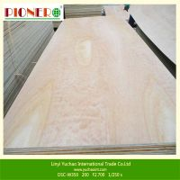 High Grade Fancy Plywood for Furniture and Decoration thumbnail image