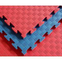 Red&Blue Taekwondo Mat