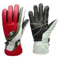 winter ski Goretex thinsulate aquabloc gloves thumbnail image