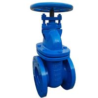 BS3464 Cast Iron Wedge Gate Valve thumbnail image