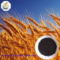 Top quality humic acid pearls with competitive price