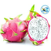 Fresh Red/White Pulp Dragon Fruit at Best Price
