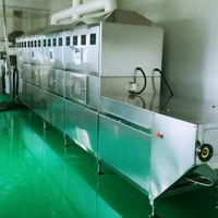 professional manufacturer of microwave sterilization and drying equipment of China