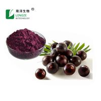 100% Natrual water soluble Acai Berry Extract Powder;herbal extract;Anthocyanidins;fruit powder