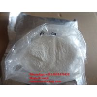 Nandrolones Base Manufacturer Directly Supply