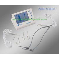 Digital apex locator