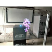 Clear Film Holographic Transparent Rear Projection Film thumbnail image