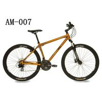 AM-007- 18.5-Inch Mountain Bike