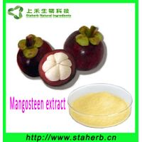 Factory supply natural mangosteen peel powder extract