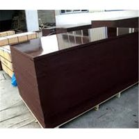Good Price 18mm Film Faced Plywood For Construction