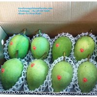 FRESH MANGO VIET NAM WITH HIGH QUALITY thumbnail image