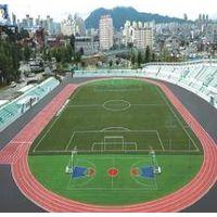 Football Field / Futsal Field / School Playground