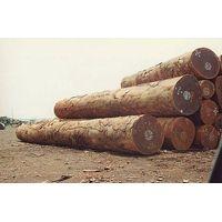 Zingana Wood