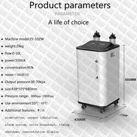 Portable 5 9 10L L Lpm litres oxygen concentrator generator oxygen-concentrator cylinders medical 5
