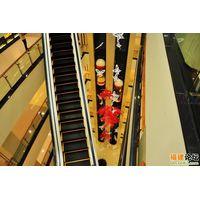 indoor observation elevator
