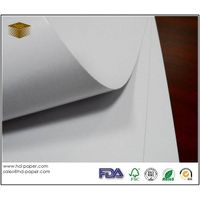 Coated Duplex Board White Back