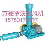 Dry vacuum pump