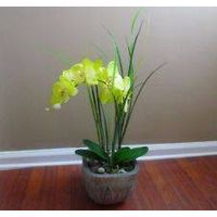 Green Butterfly Orchid Long grasses Artificial Plant