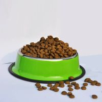 Natural dry dog food  pet food fresh duck meat