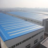 Steel Structure Warehouse/Shed/Workshop/Steel Structure Building