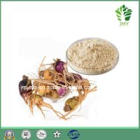 Sex Enhancement Maca Extract 4:1,10:1,Meson oil glucoside 10%