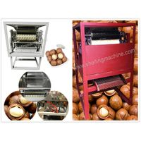Macadamia Nut Cutting Machine