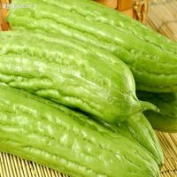 Bitter Melon P.E. 10:1 test by TLC