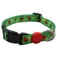 No minimum order cheap price dog collar